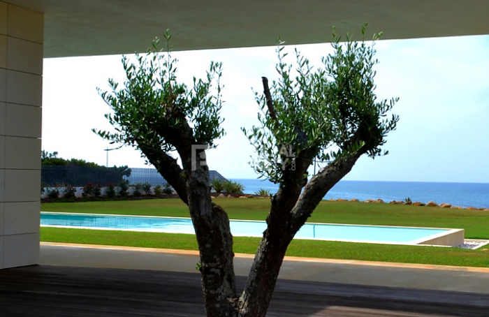 portugal-Villa-frontline_quinta_da_marinnha-tree-out-side-pool