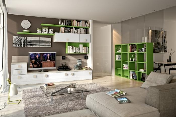 white-and-green-Living-Room-Bookshelves