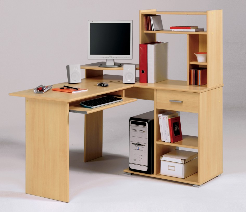 Computer Desk with Archaic Wooden Bookshelves