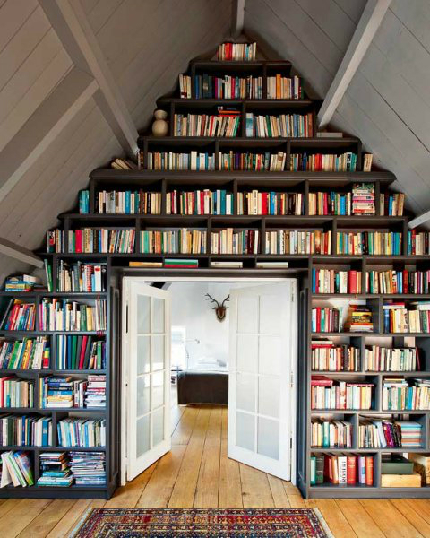 Attic Libraries Ideas