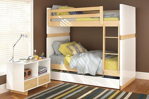 Modern Designed Bunk Bed