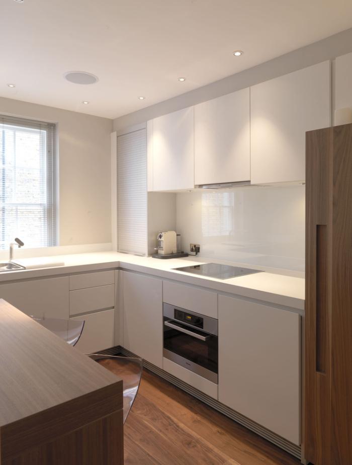 Contemporary-Kitchen 3
