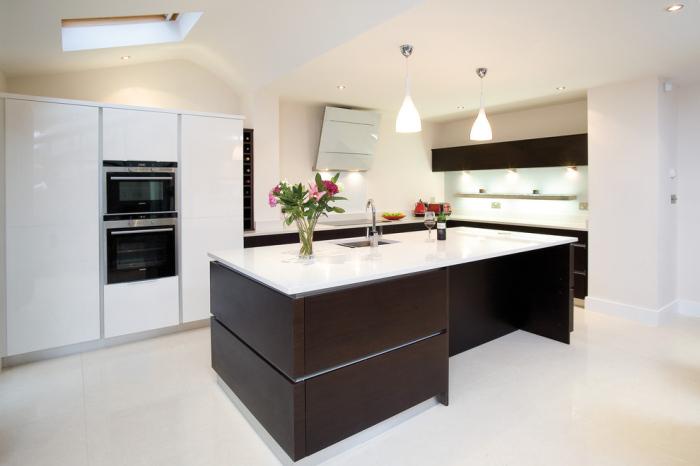 Contemporary-Kitchen 4