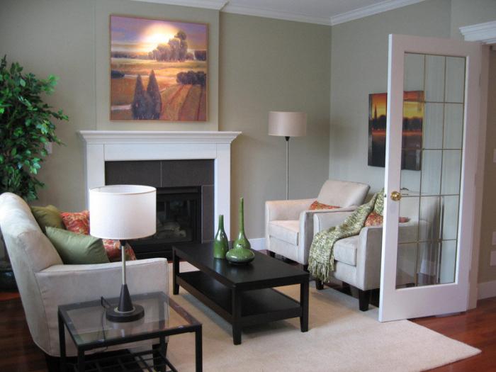 Contemporary-Living-Room-Idea