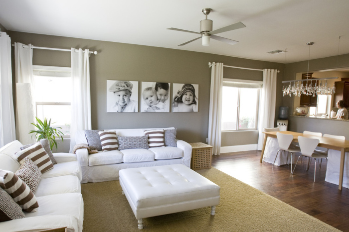 Magnetic Grey Living Room Color Scheme