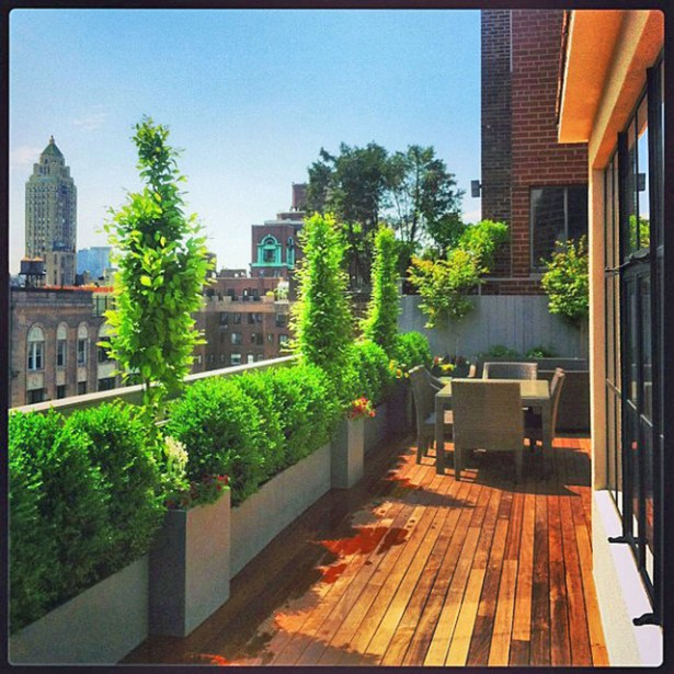 roof garden fence ideas