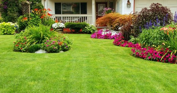 Front yard garden with multicolored floral effect