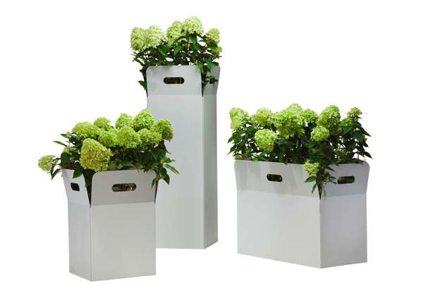 Cardboard flower vases decor