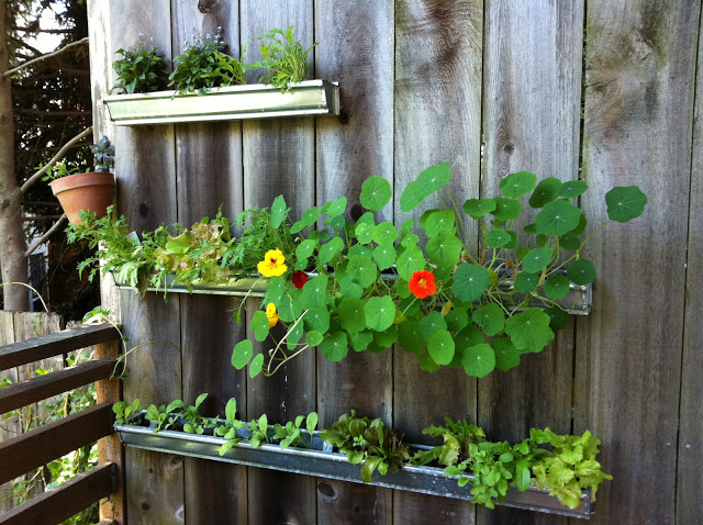 small wooden boxes planted with colorful flowers
