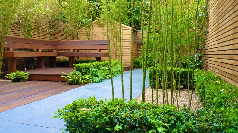Garden with sleek bamboo grass and green bushes