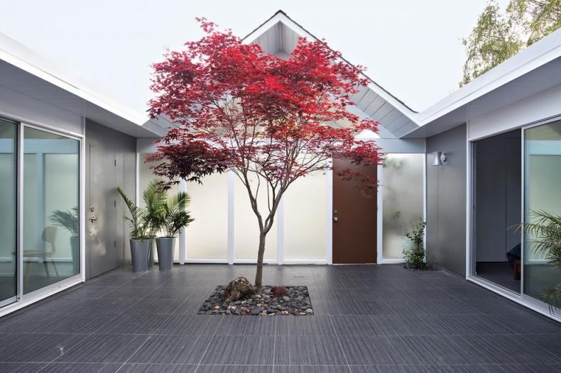 Modern garden design plan