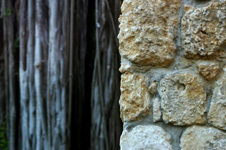 Stone wall looks hardy