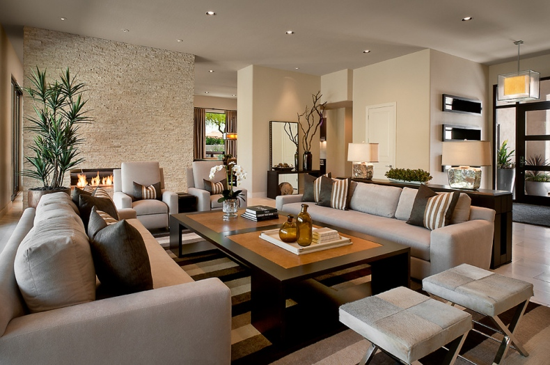 Elegant Modern Living Room