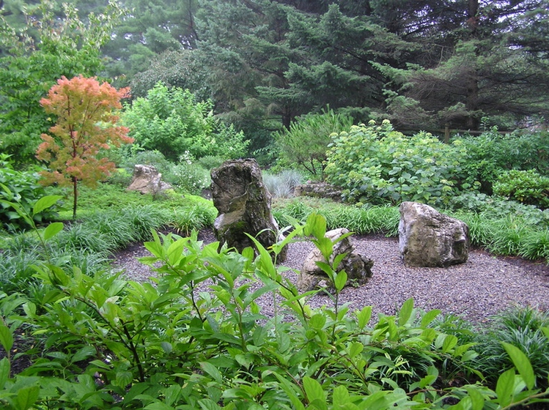 Japanese garden design ideas for Typical landscaping plants