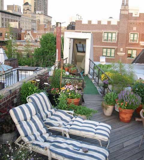 Lovely rooftop garden design