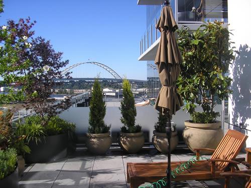 Simple rooftop garden design