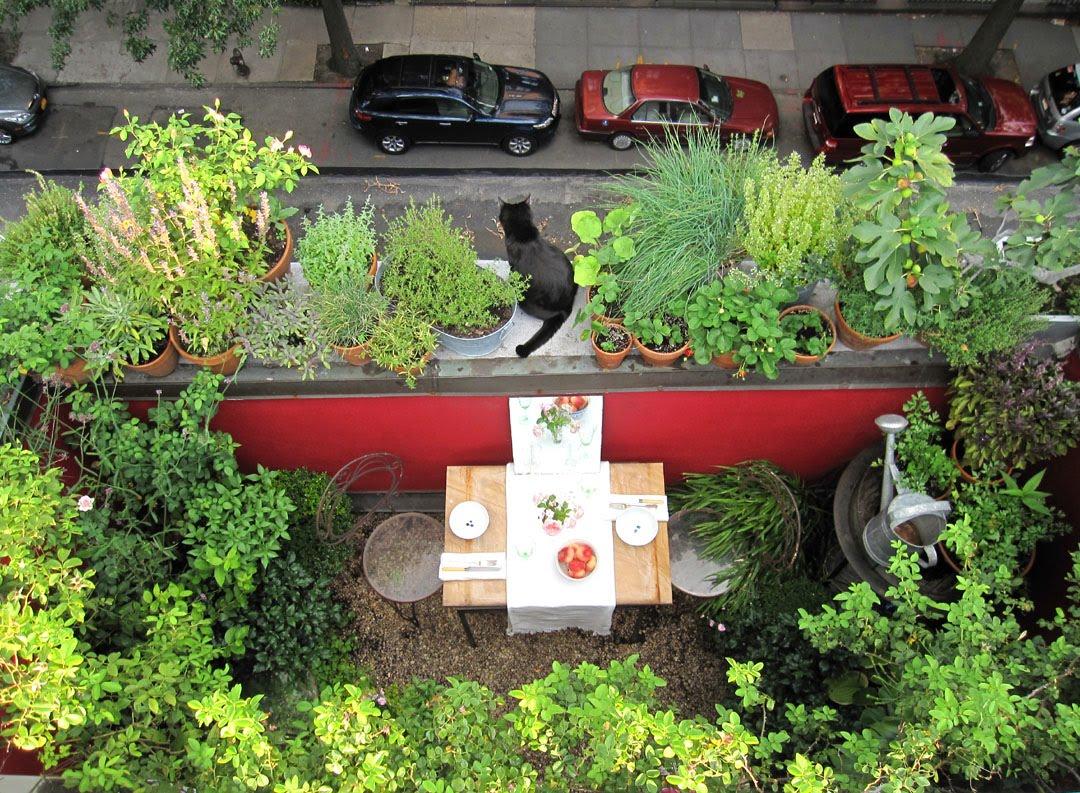Faburous roof garden