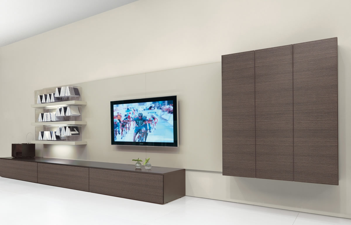 Modern high-end entertainment center