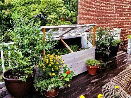 outdoor garden design
