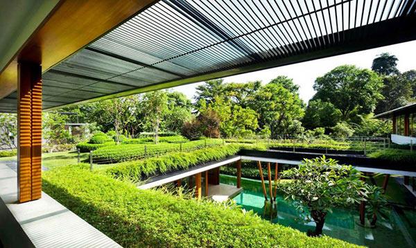 Roof garden surrounding the water courtyard