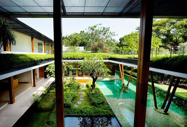 Water lily glass walls showing outside view