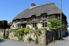 Modern Vintage Thatched house Design Ideas