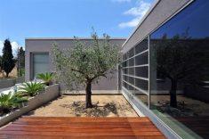 Thiva House Landscape