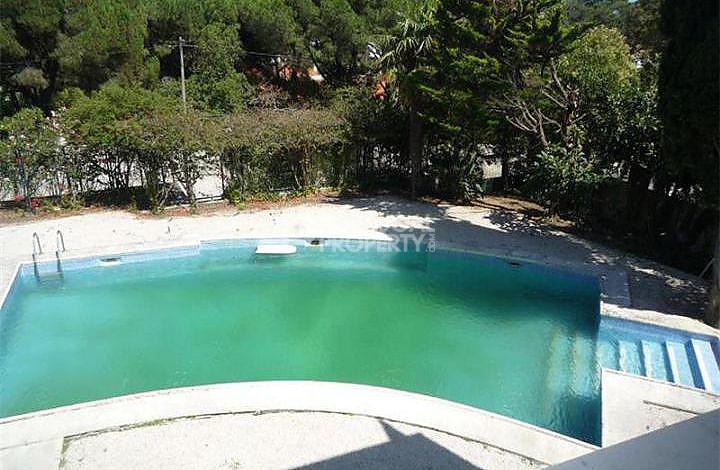 arc shaped swimming pool