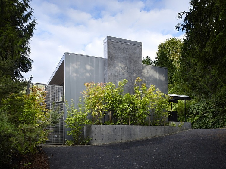 House structure surrounded with trees